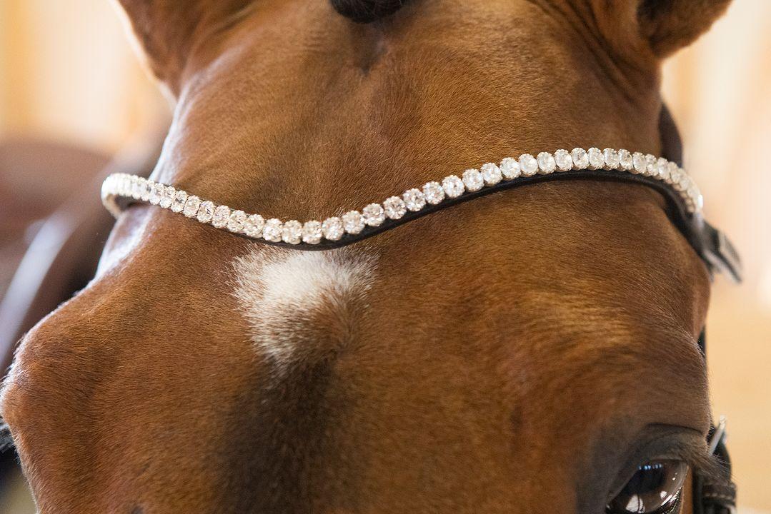 sleek crystal browband